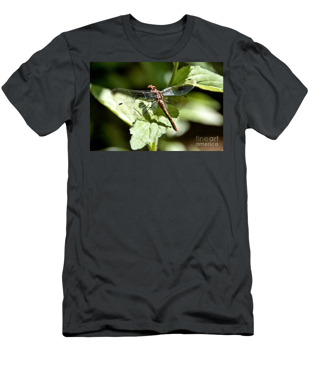 Dragonfly Men's T-Shirt (Athletic Fit) featuring the photograph Sunny Dragonfly by Cheryl Baxter