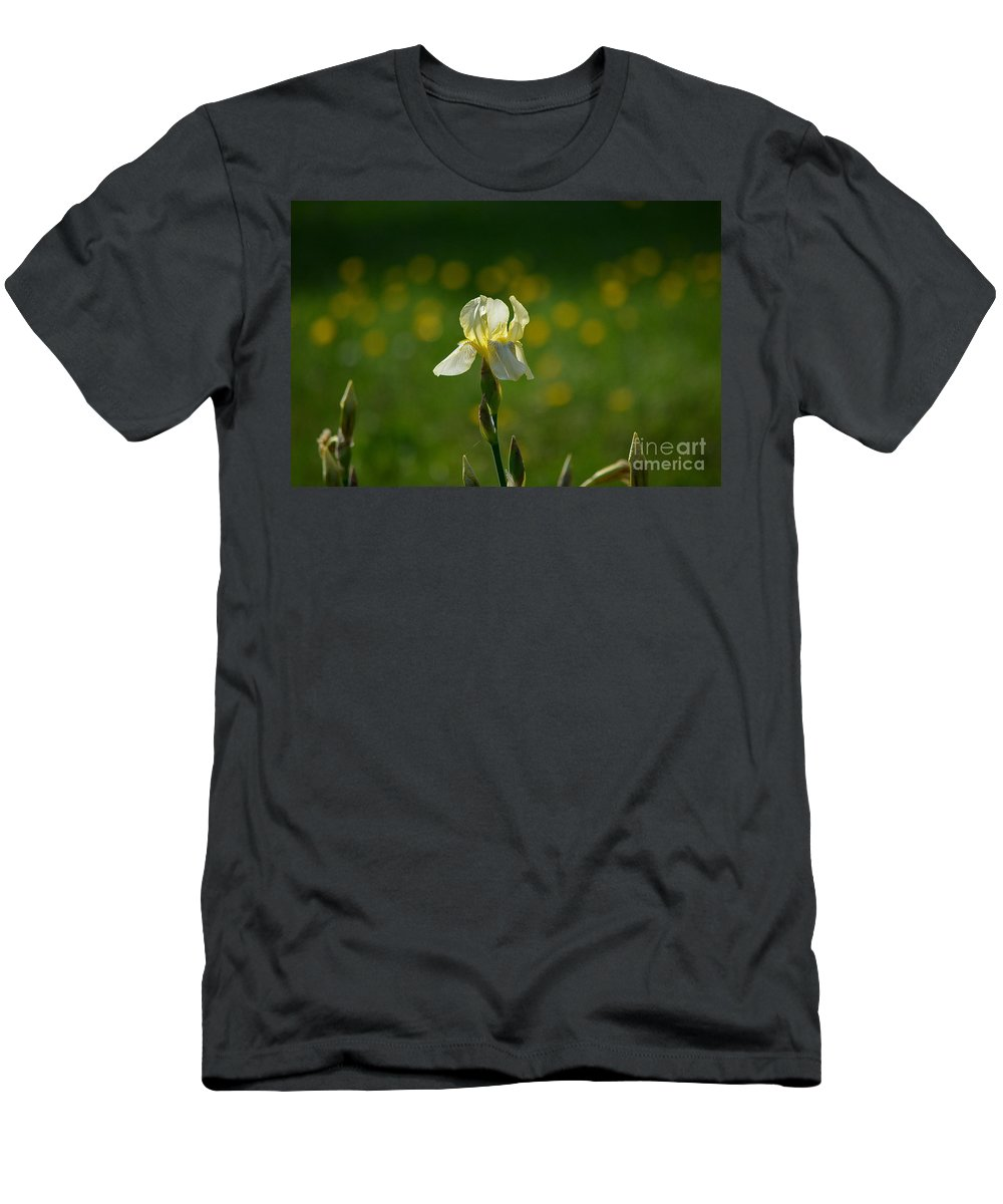 Iris Men's T-Shirt (Athletic Fit) featuring the photograph Sunny Iris by Karin Everhart