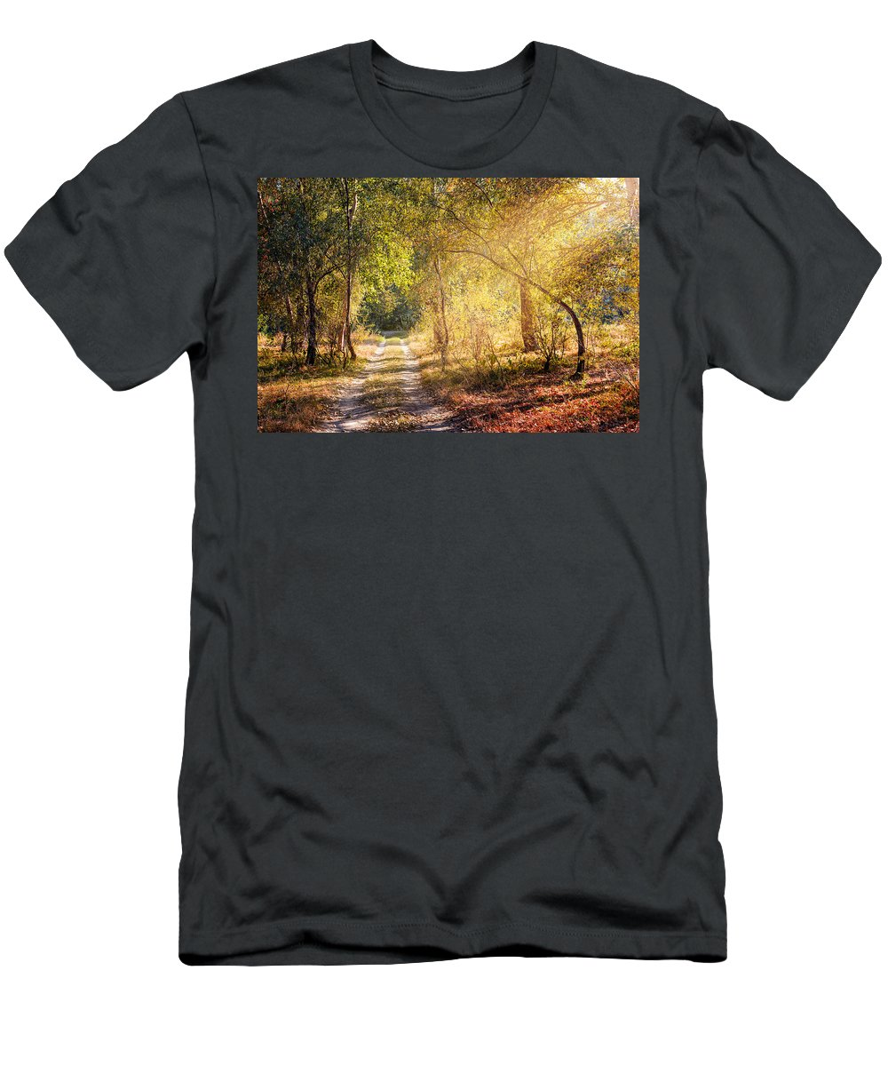 Kiev Men's T-Shirt (Athletic Fit) featuring the photograph Sunray In The Autumn Forest by Alain De Maximy
