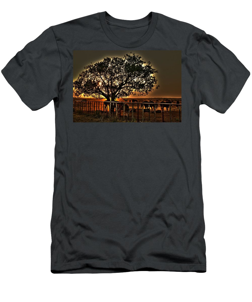 Horses Men's T-Shirt (Athletic Fit) featuring the photograph Sunset On A Texas Drought by Gary Emilio Cavalieri