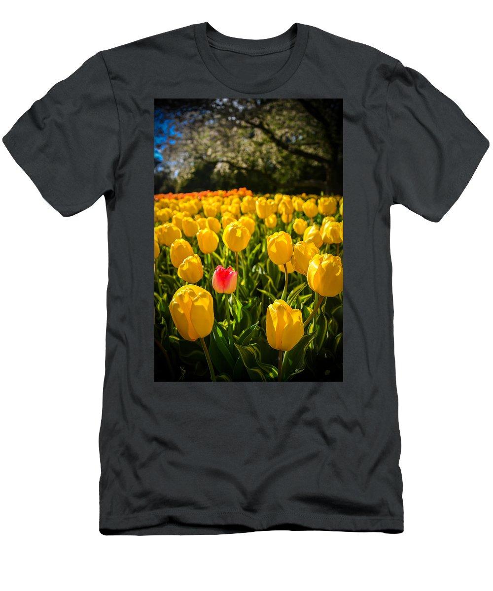 Longwood Gardens Photographs T-Shirts