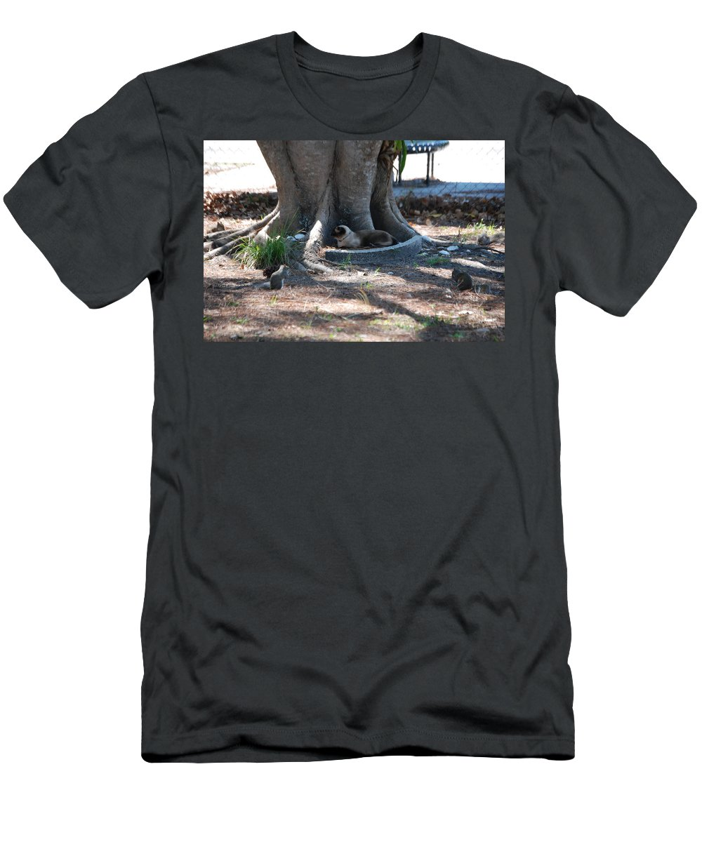 Cat Has Four Squirrels Around Him Men's T-Shirt (Athletic Fit) featuring the photograph Surrounded by Robert Floyd