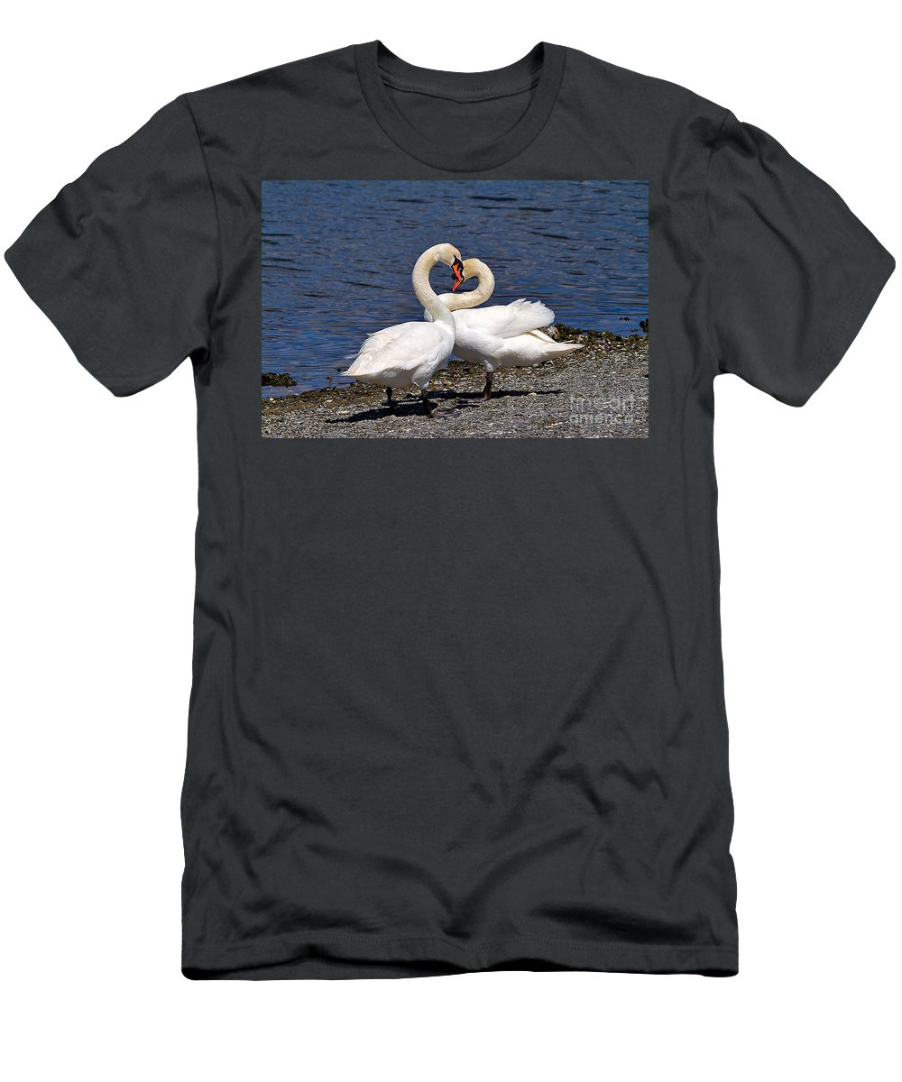 Nature Men's T-Shirt (Athletic Fit) featuring the photograph Swans Courting by Louise Heusinkveld