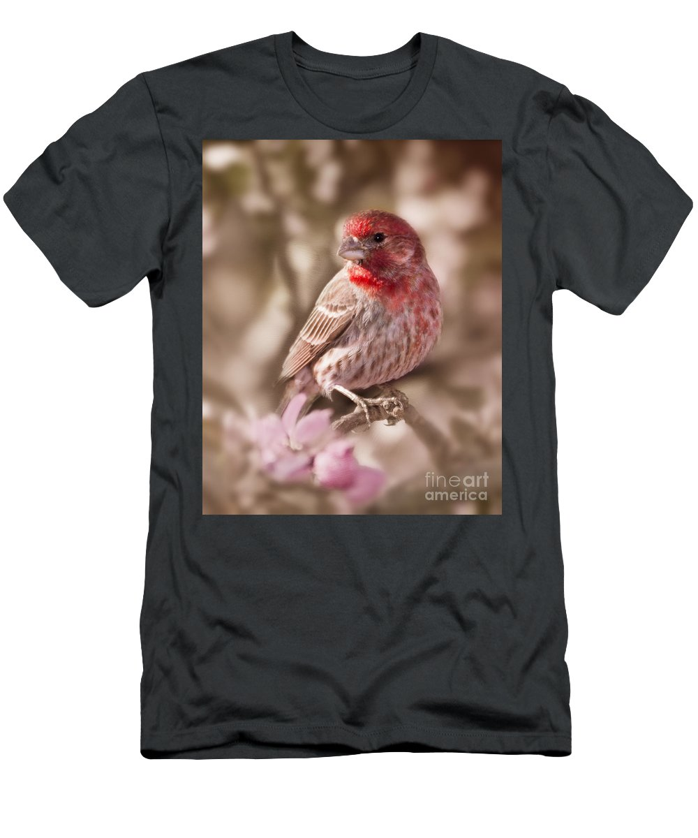 House Finch Men's T-Shirt (Athletic Fit) featuring the photograph Sweet Songbird by Betty LaRue