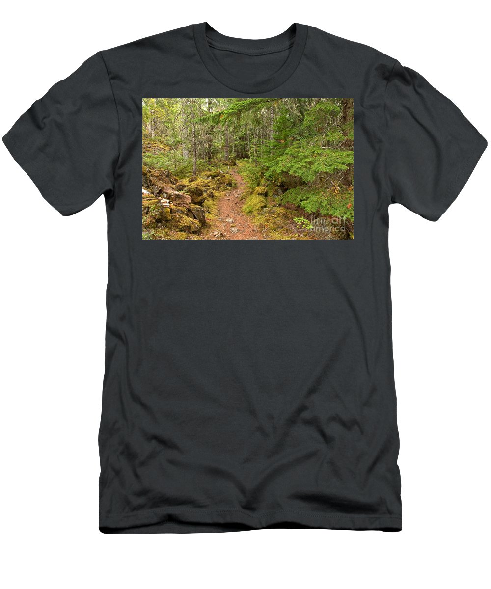 Swim Lake Men's T-Shirt (Athletic Fit) featuring the photograph Swim Lake Trail by Adam Jewell