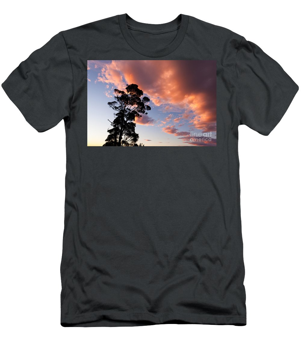 Atmosphere Men's T-Shirt (Athletic Fit) featuring the photograph Tall Tree Against A Dramatic Sunset Clouds Sky by Stephan Pietzko