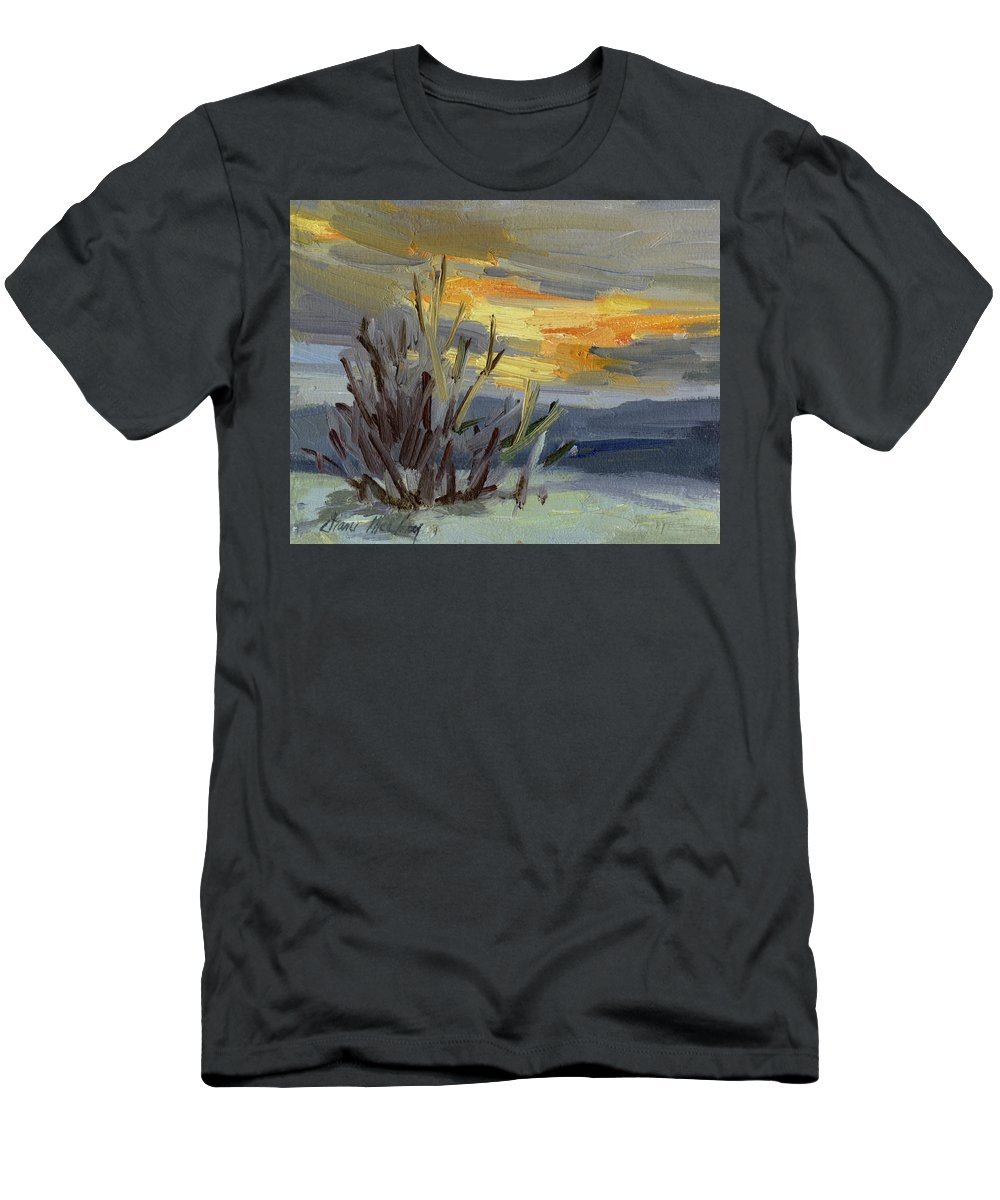 Teanaway Men's T-Shirt (Athletic Fit) featuring the painting Teanaway Valley Winter by Diane McClary
