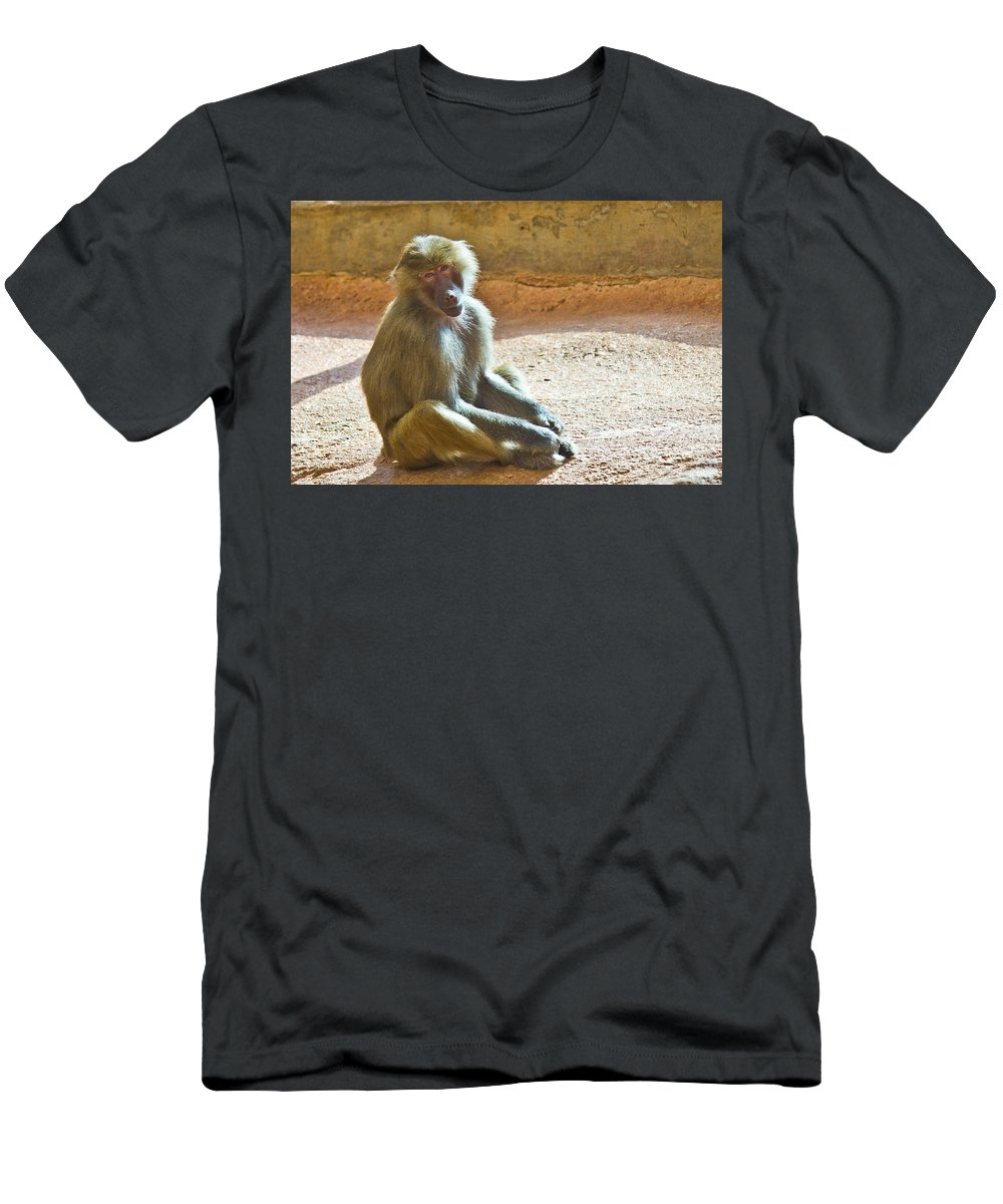 Baboon Men's T-Shirt (Athletic Fit) featuring the photograph Teen Baboon by Jonny D