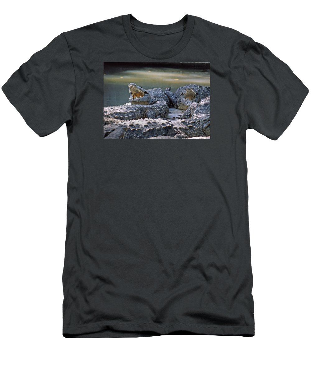 Animals Men's T-Shirt (Athletic Fit) featuring the photograph Ma-904-the American Crocodile by Ed Cooper Photography