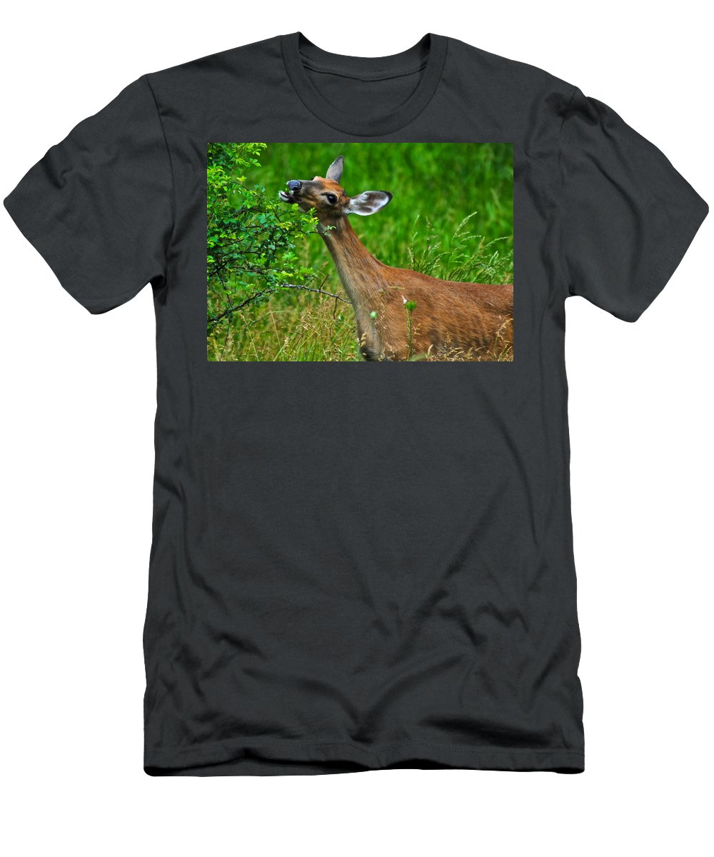 Deer Men's T-Shirt (Athletic Fit) featuring the photograph The Dreaded Deer Giraffe by Frozen in Time Fine Art Photography