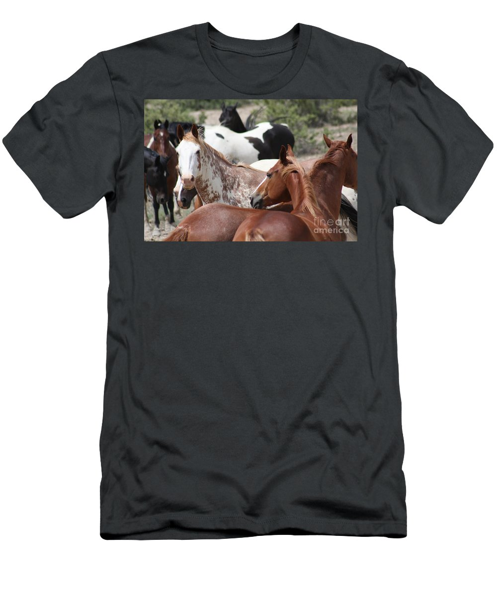 Horses Men's T-Shirt (Athletic Fit) featuring the photograph The Gang by Brandi Maher