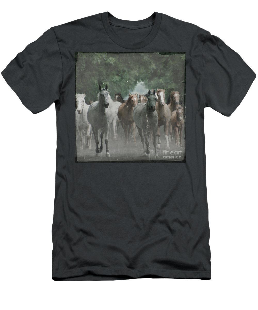 Arabian Men's T-Shirt (Athletic Fit) featuring the photograph The Horsechestnut Tree Avenue by Angel Ciesniarska