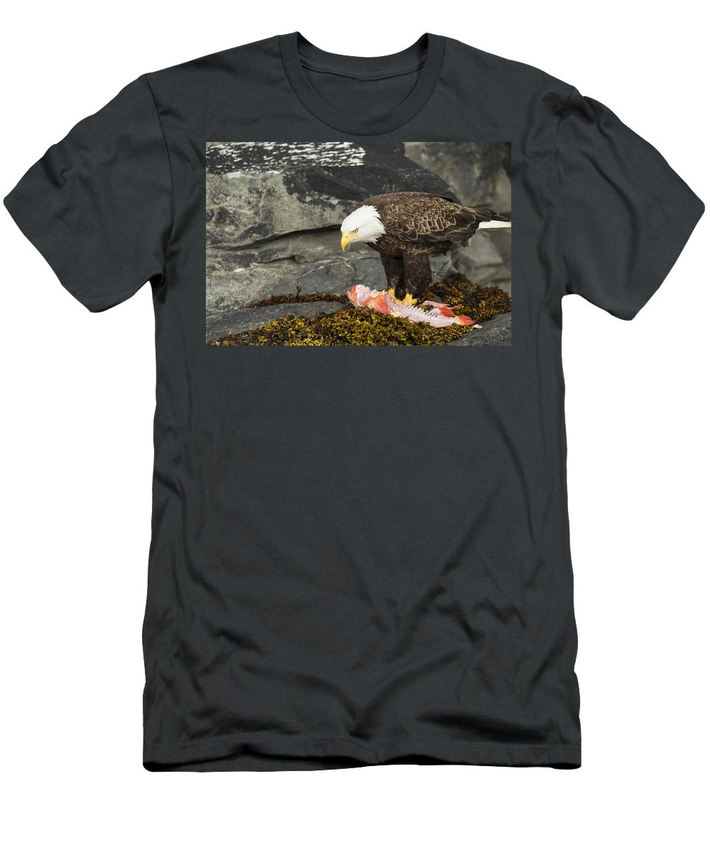 Eagle Men's T-Shirt (Athletic Fit) featuring the photograph The Kill by Ted Raynor