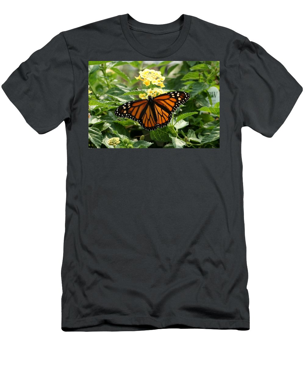 Butterfly Men's T-Shirt (Athletic Fit) featuring the photograph The Monarch by Barbara S Nickerson