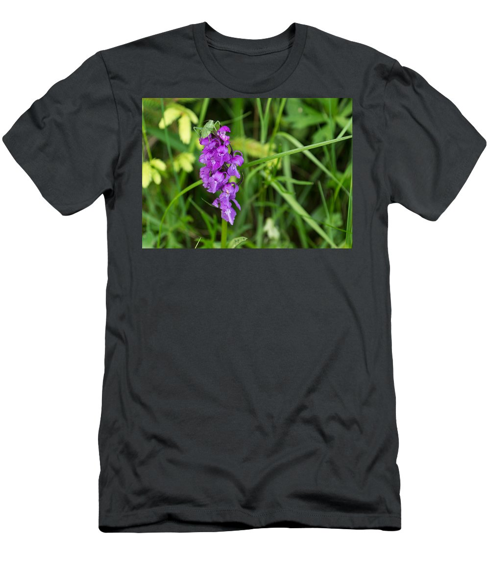 Orchid Men's T-Shirt (Athletic Fit) featuring the photograph The Orchid And The Grasshopper by Georgia Mizuleva