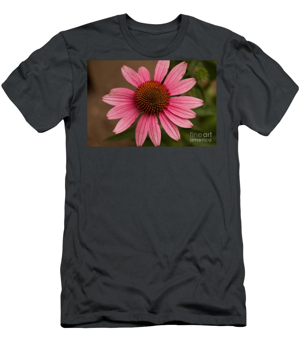 Pink Men's T-Shirt (Athletic Fit) featuring the photograph The Pink Daisy by William Norton