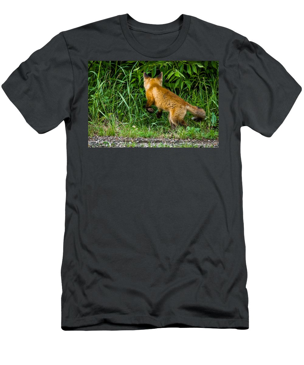 Kit Men's T-Shirt (Athletic Fit) featuring the photograph The Pounce by Steve Harrington