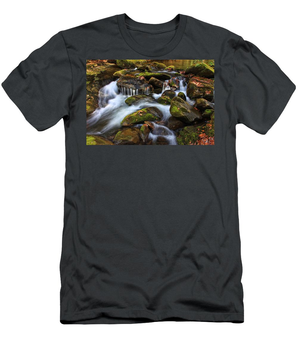 Water Men's T-Shirt (Athletic Fit) featuring the photograph The Stream by Shari Jardina