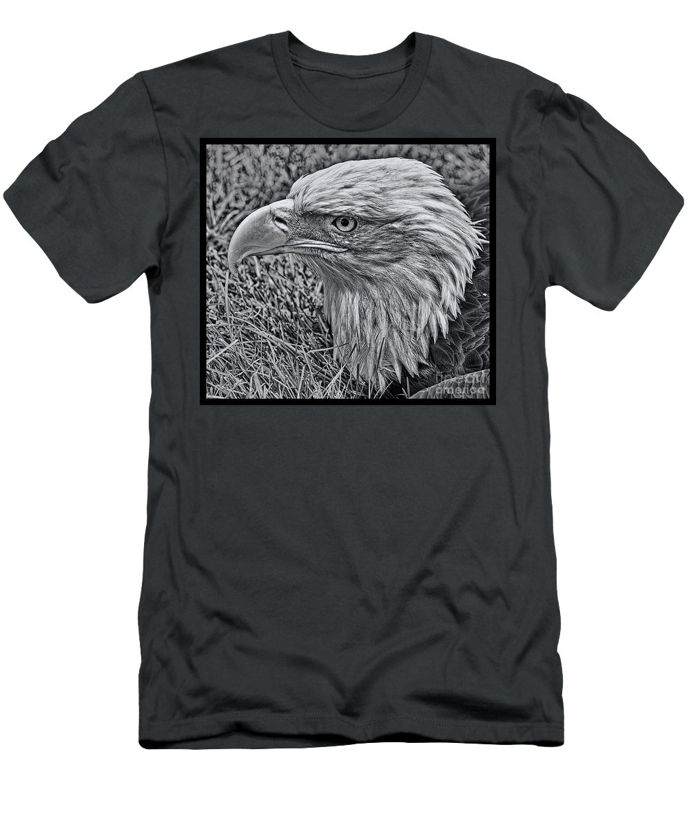 Bald Eagle Men's T-Shirt (Athletic Fit) featuring the photograph The Thinker by Tommy Anderson