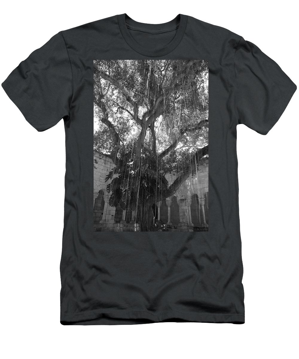 Black And White Men's T-Shirt (Athletic Fit) featuring the photograph The Tree Vines by Rob Hans