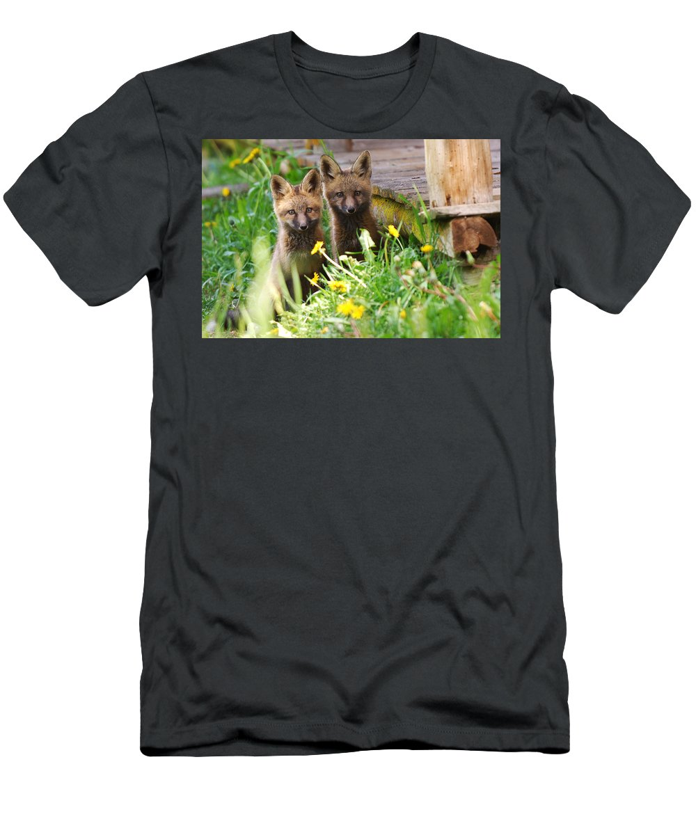 Animal#1 Men's T-Shirt (Athletic Fit) featuring the photograph The Twins by Randy Giesbrecht