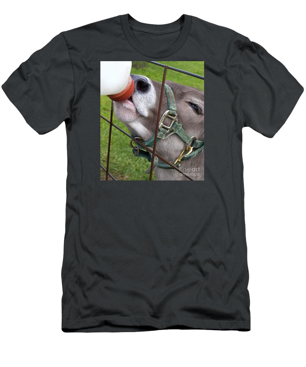 Calf Men's T-Shirt (Athletic Fit) featuring the photograph Thirsty Baby by Ann Horn