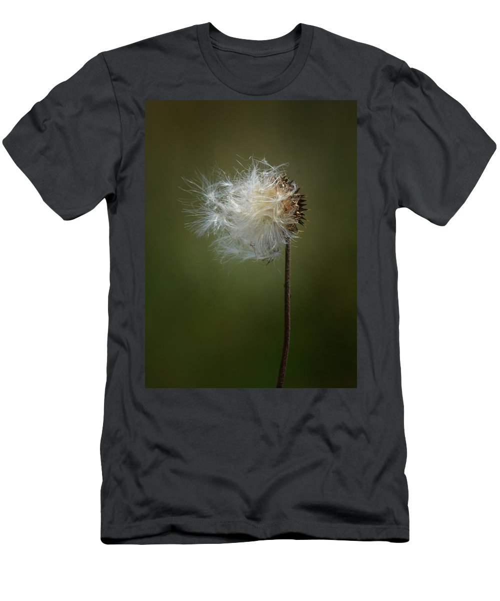 Thistle 14-4 Men's T-Shirt (Athletic Fit) featuring the photograph Thistle 14-4 by Maria Urso