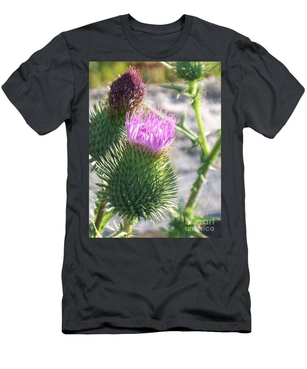 Thistle Men's T-Shirt (Athletic Fit) featuring the painting Thistle Flower by Eric Schiabor