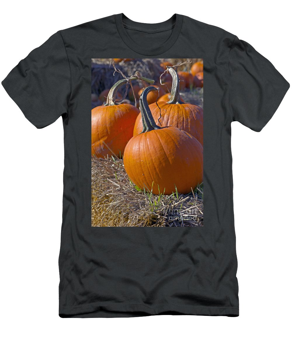 Pumpkin Men's T-Shirt (Athletic Fit) featuring the photograph Three Pumpkins by Sharon Talson