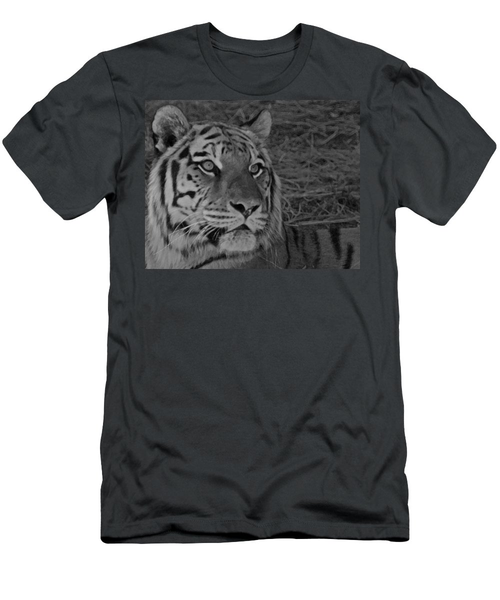 Tiger Men's T-Shirt (Athletic Fit) featuring the photograph Tiger Bw by Ernie Echols