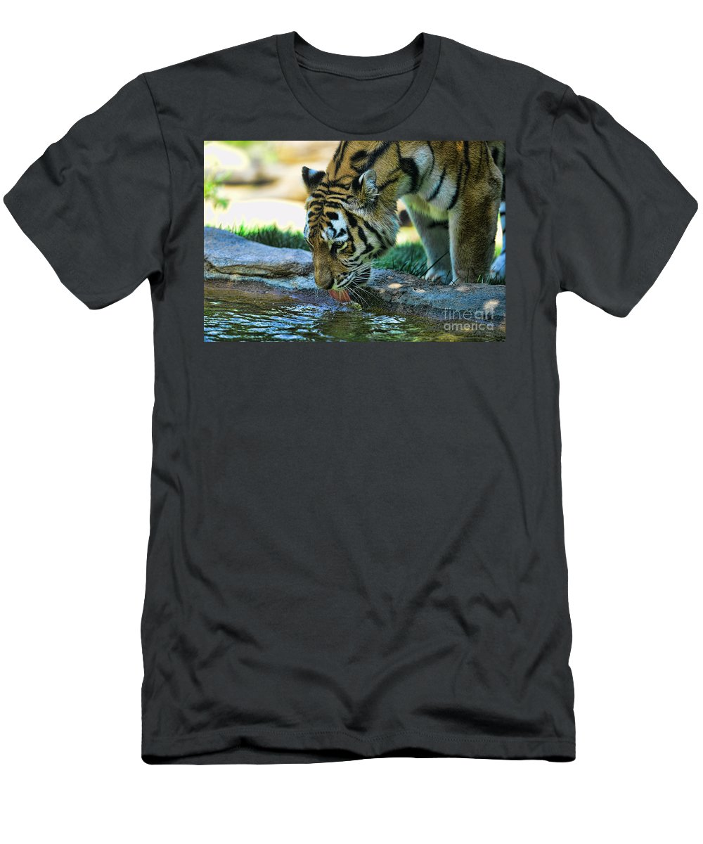 Tiger Drinking Water Men's T-Shirt (Athletic Fit) featuring the photograph Tiger Drinking Water by Paul Ward