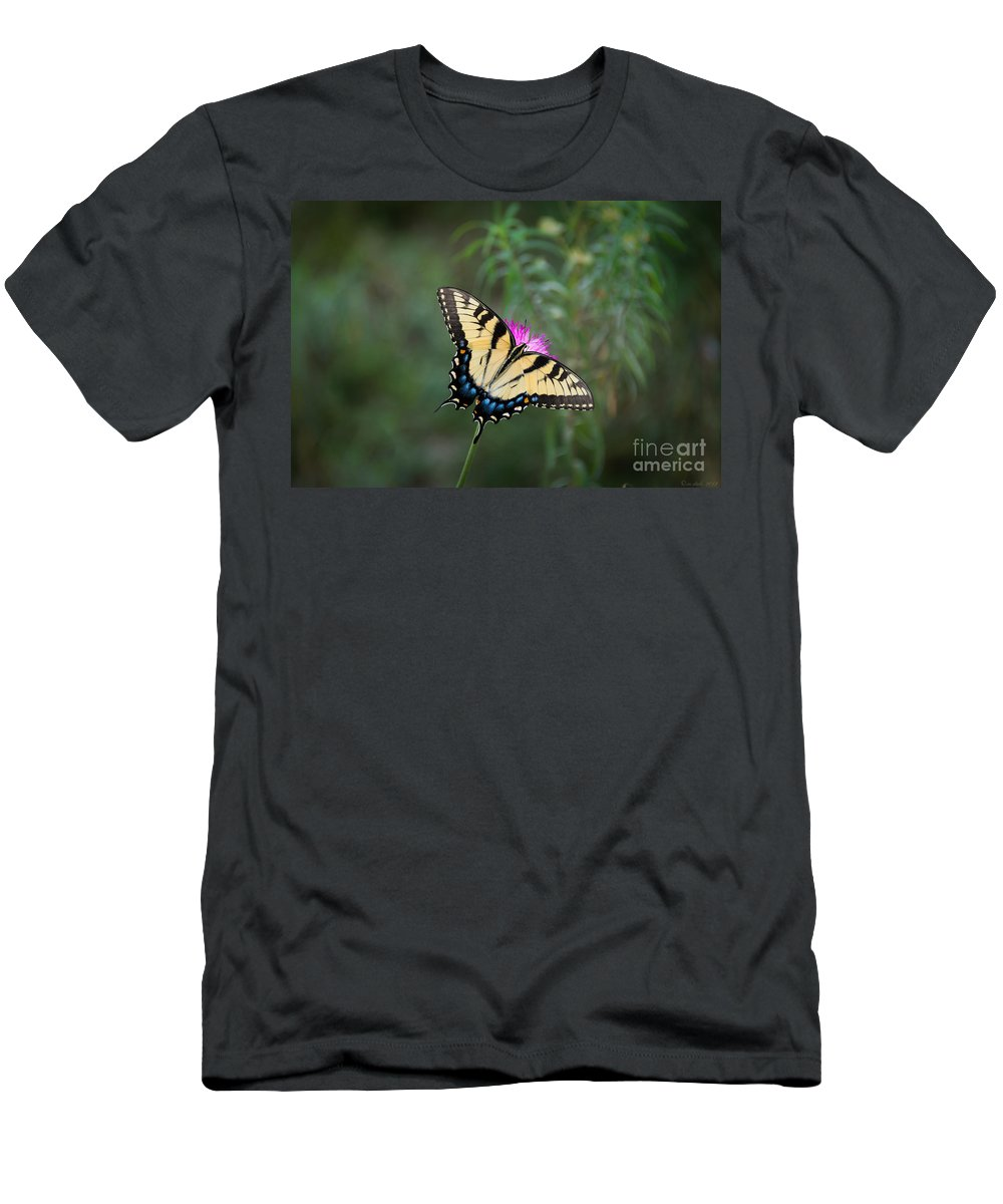 Tiger Men's T-Shirt (Athletic Fit) featuring the photograph Tiger Swallowtail I Believe by M Dale