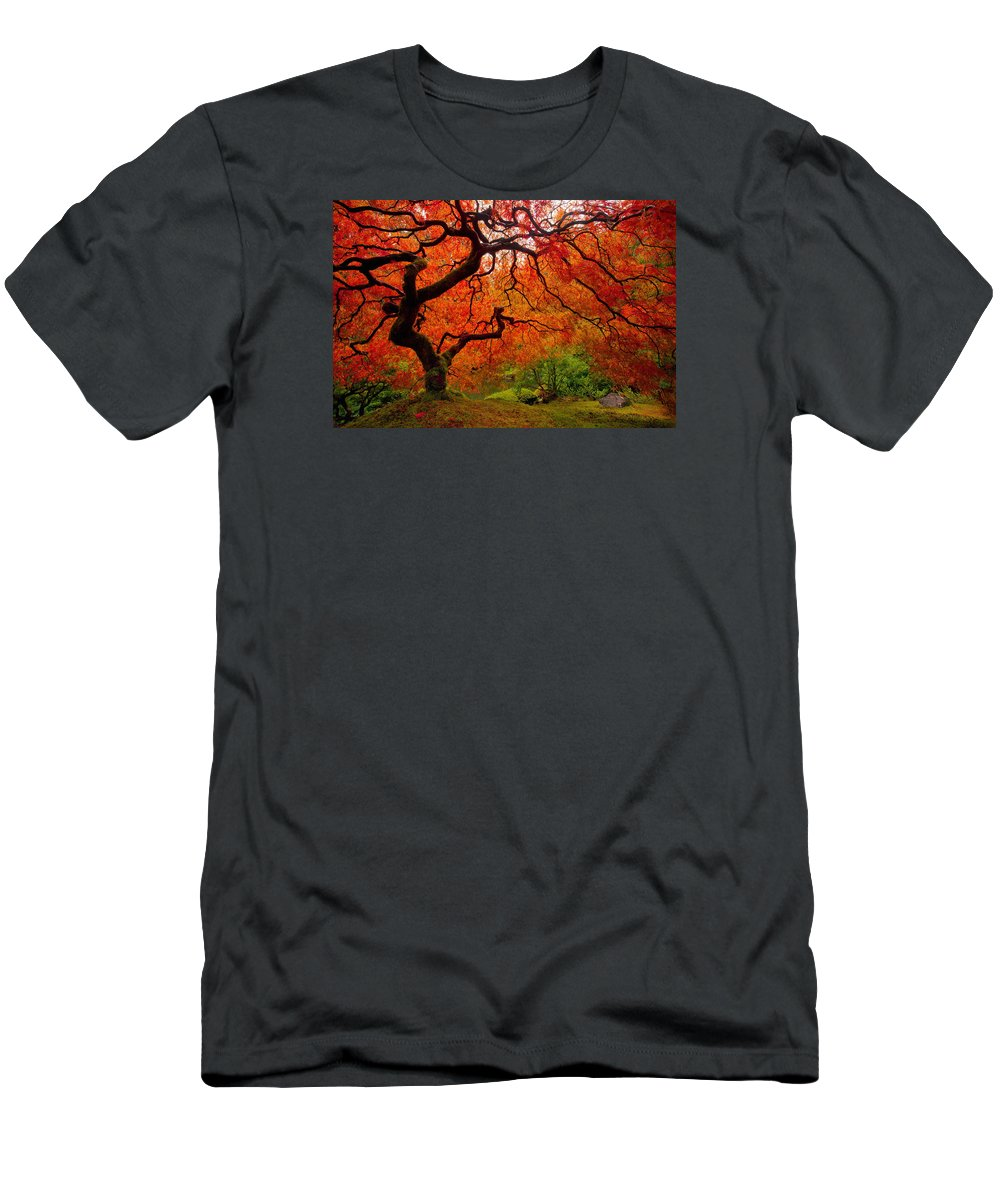 Portland T-Shirt featuring the photograph Tree Fire by Darren White