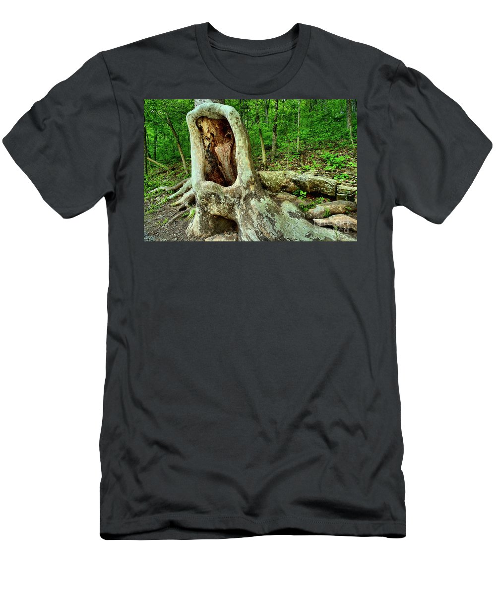 Spring Mill State Park Men's T-Shirt (Athletic Fit) featuring the photograph Tree Mouth by Adam Jewell