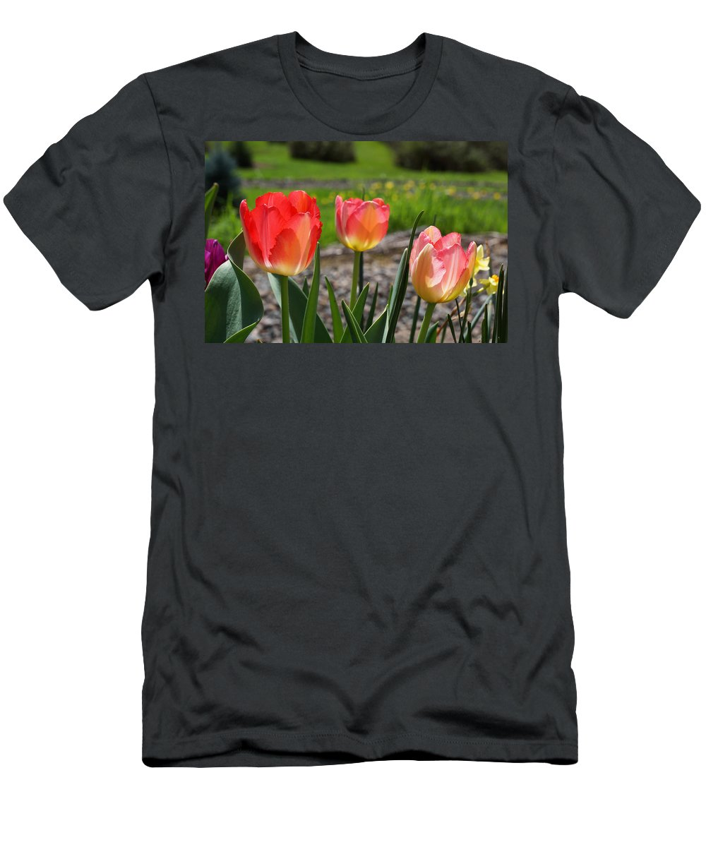 Red Men's T-Shirt (Athletic Fit) featuring the photograph Tulips Red Pink Tulip Flowers Art Prints by Baslee Troutman