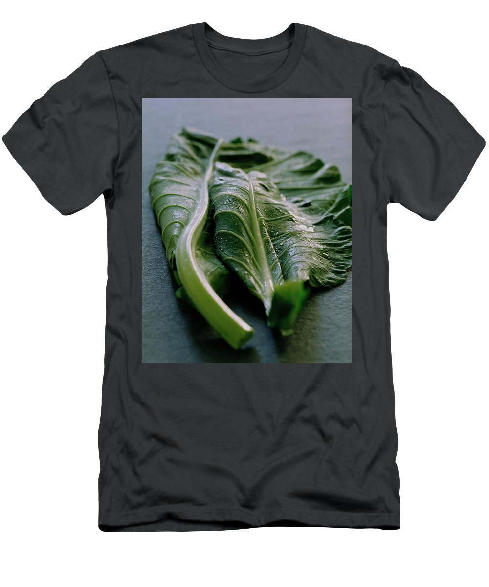 Nobody Men's T-Shirt (Athletic Fit) featuring the photograph Two Collard Leaves by Romulo Yanes