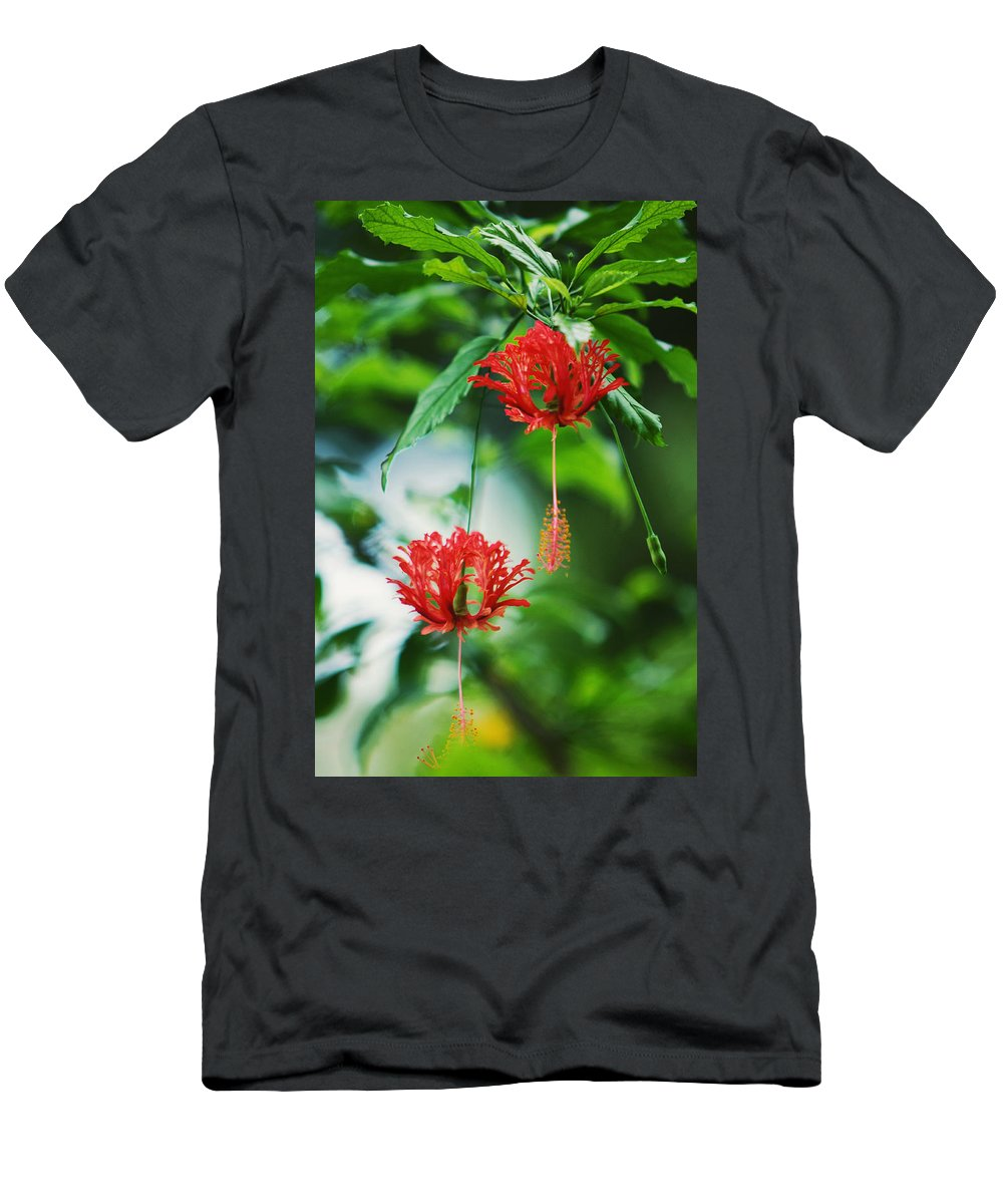 Hibiscus Men's T-Shirt (Athletic Fit) featuring the photograph Two Red Hibiscus by Jenny Rainbow