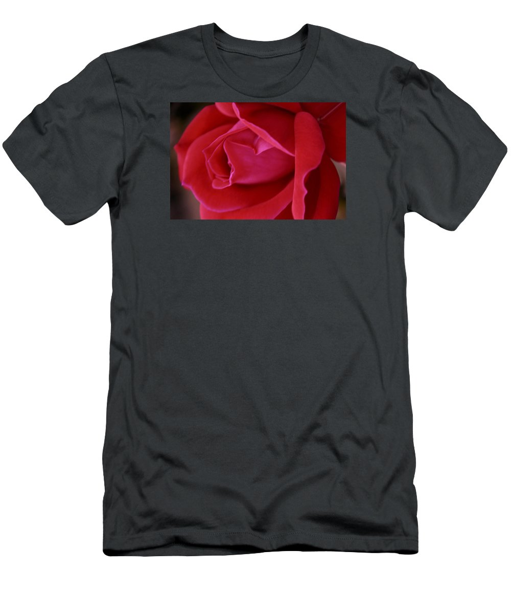 Rose T-Shirt featuring the photograph Unfolding Glory by Mary Beglau Wykes