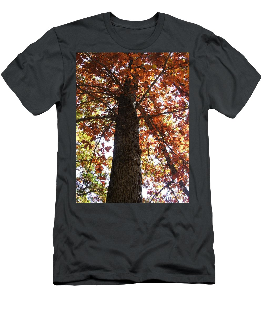 Tree Men's T-Shirt (Athletic Fit) featuring the photograph Up Fall by Minding My Visions by Adri and Ray