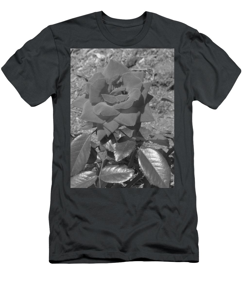 Rose Men's T-Shirt (Athletic Fit) featuring the photograph Velvet Rose by Pharris Art