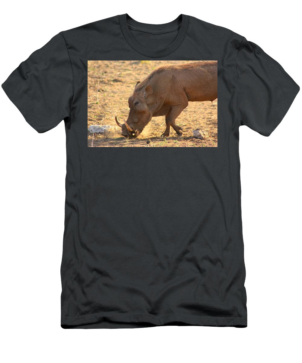 Warthog Men's T-Shirt (Athletic Fit) featuring the photograph Warthog by Amanda Stadther