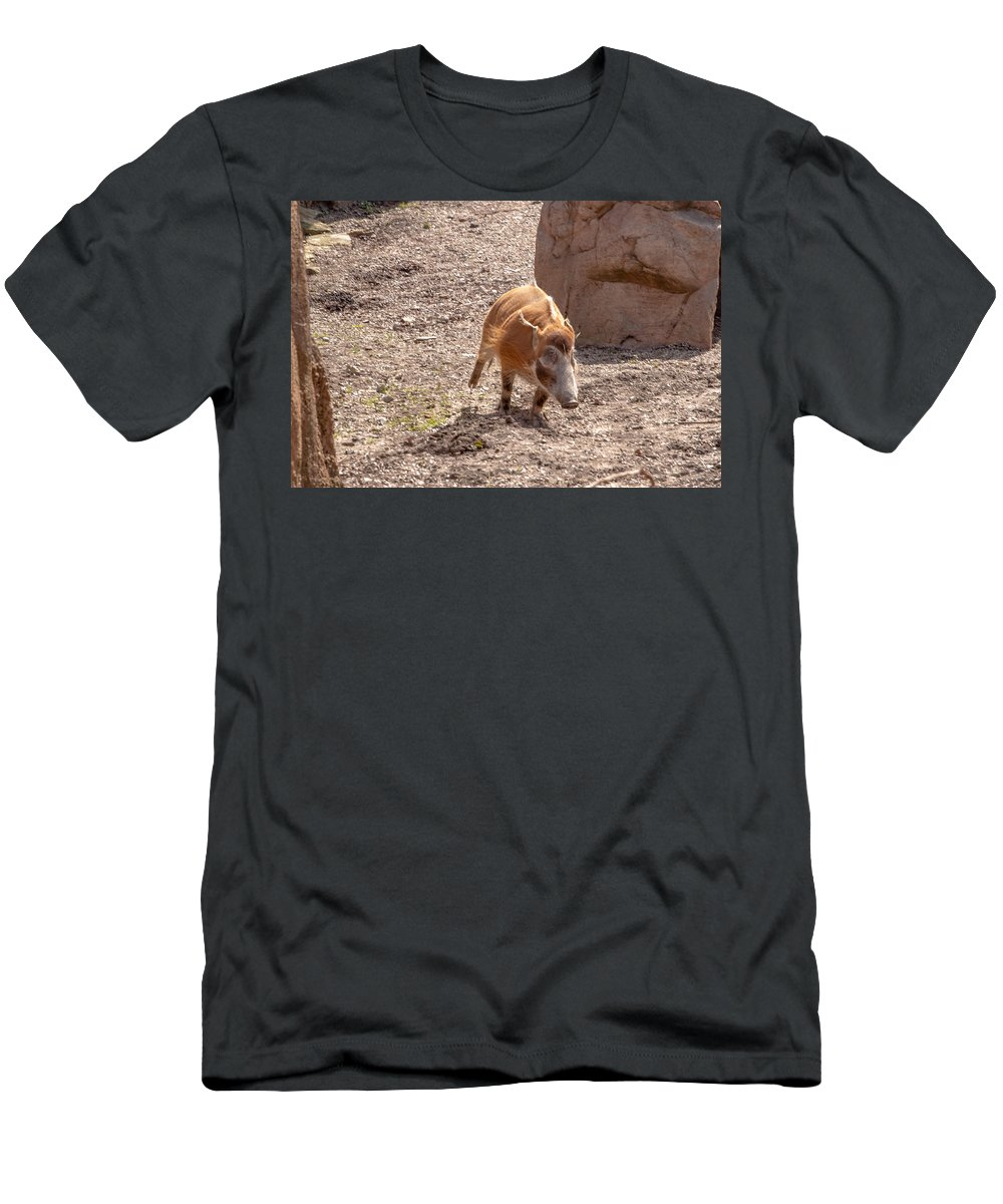 Warthog Men's T-Shirt (Athletic Fit) featuring the photograph Warthog by Thomas Sellberg