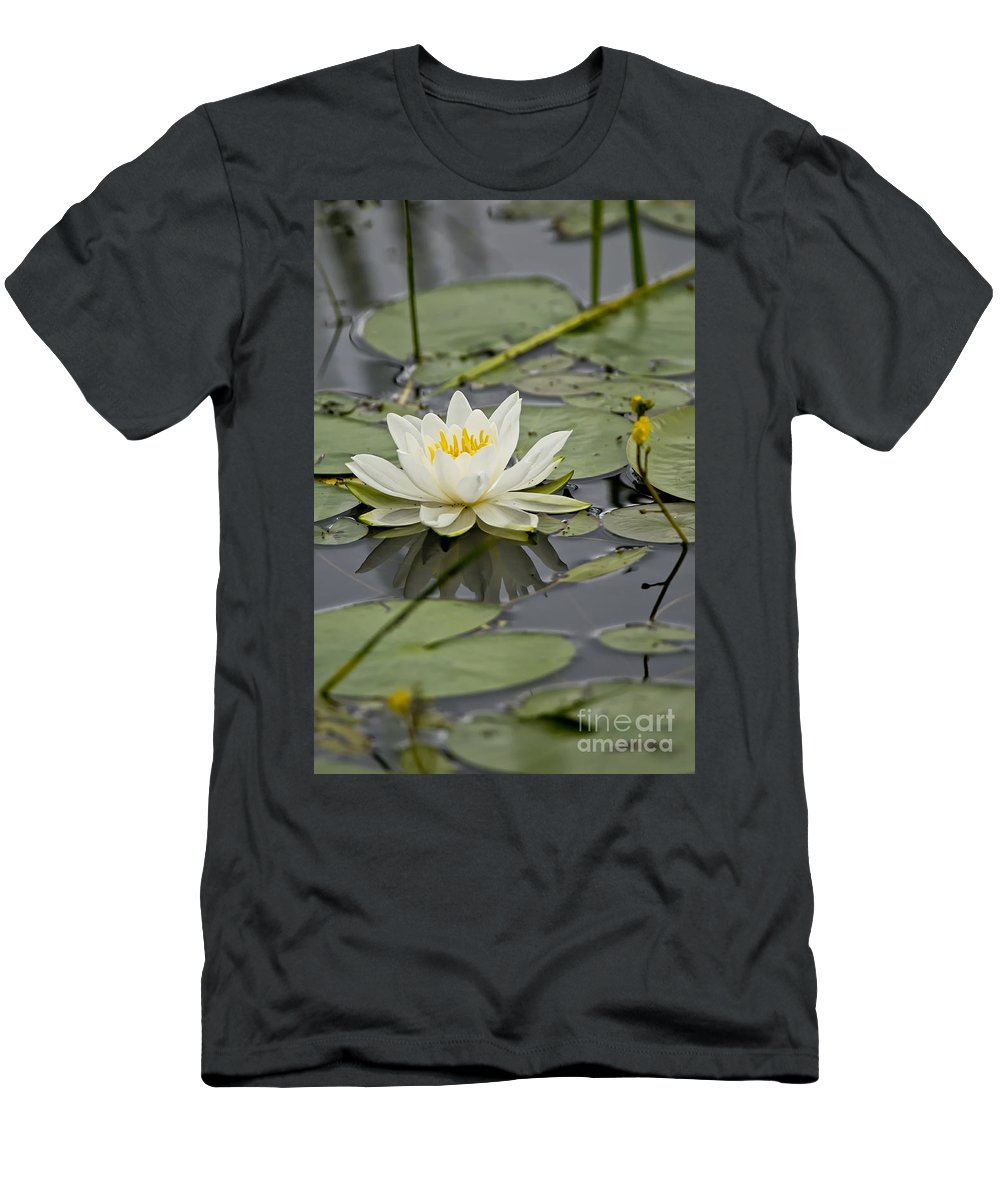 Water Lily Men's T-Shirt (Athletic Fit) featuring the photograph Water Lily Pictures 45 by World Wildlife Photography