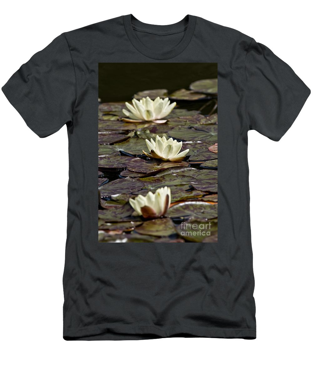 Water Lily Men's T-Shirt (Athletic Fit) featuring the photograph Water Lily Pictures 64 by World Wildlife Photography