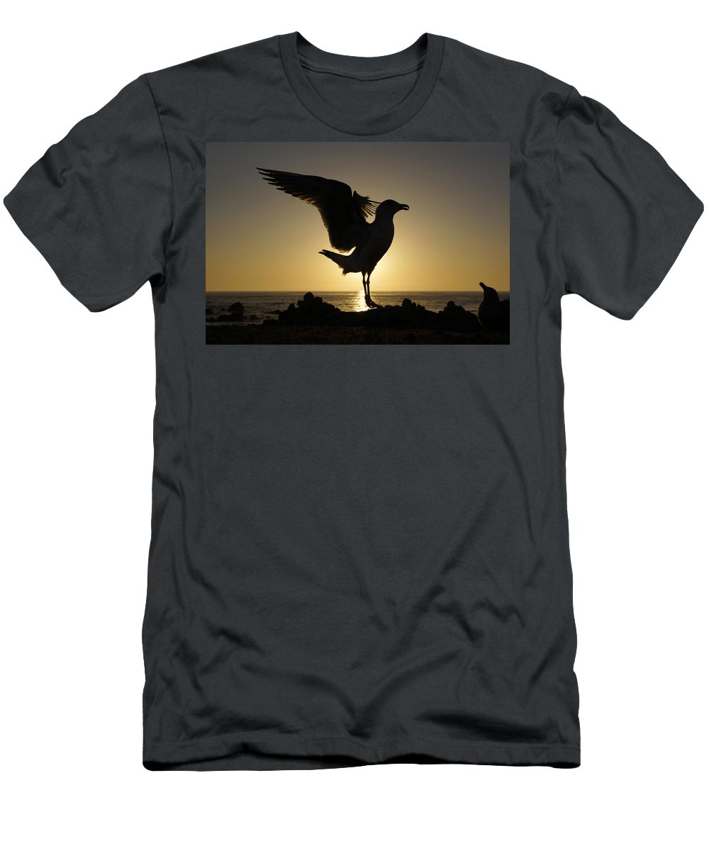 Feb0514 Men's T-Shirt (Athletic Fit) featuring the photograph Western Gull At Sunset California by Hiroya Minakuchi