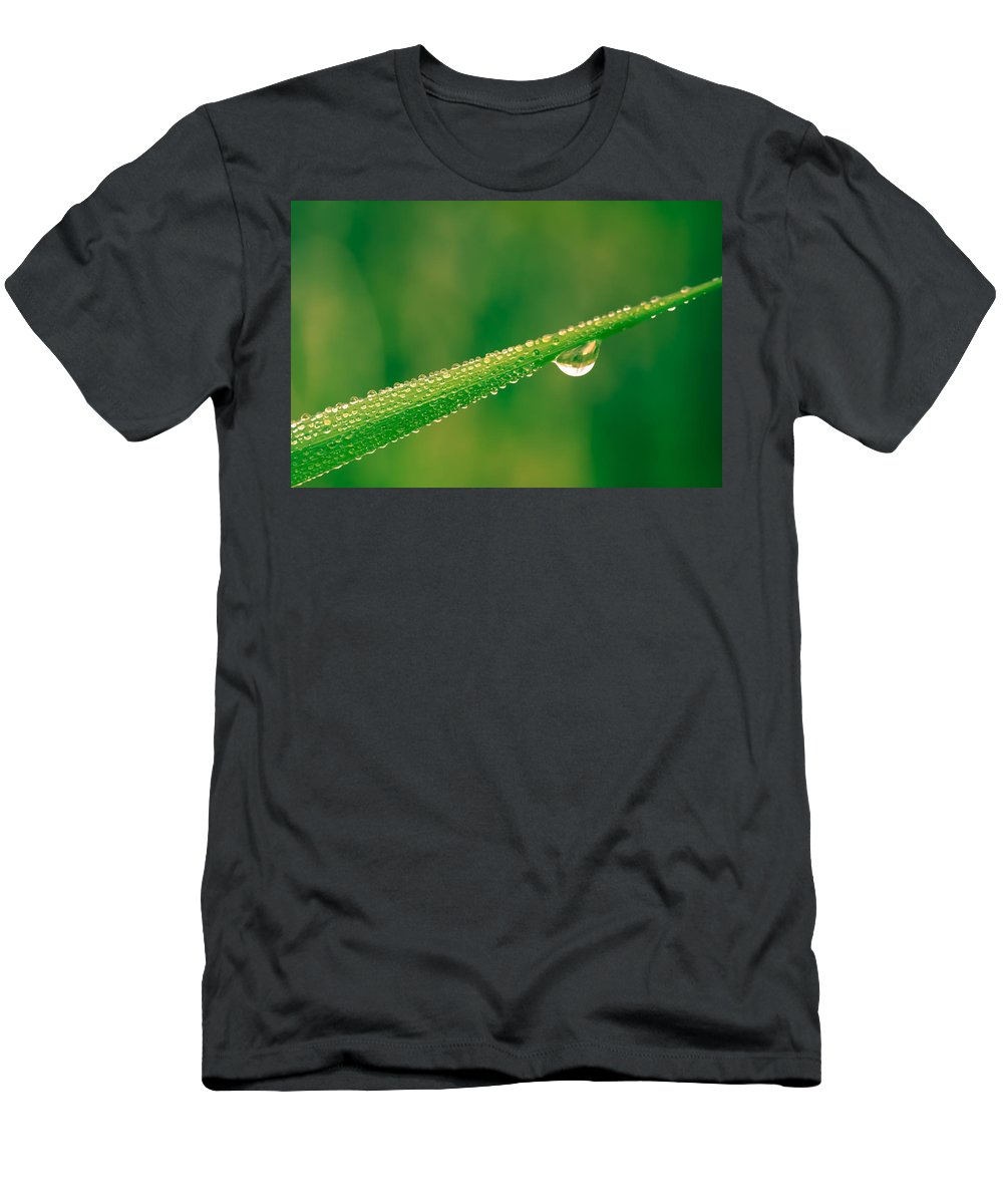 Blade Men's T-Shirt (Athletic Fit) featuring the photograph Wet Blade by Shane Holsclaw