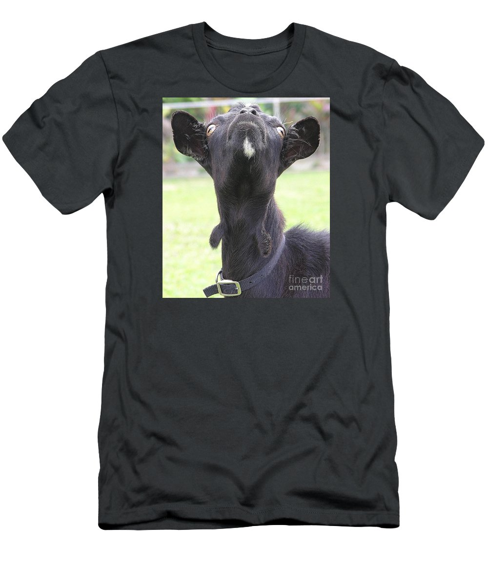 Goat T-Shirt featuring the photograph Whats Up by Mary Deal
