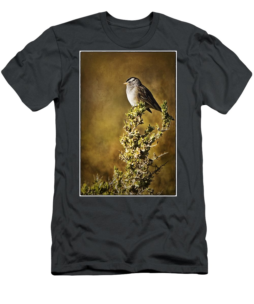 White-crowned Sparrow Men's T-Shirt (Athletic Fit) featuring the photograph White-crowned Sparrow by Priscilla Burgers