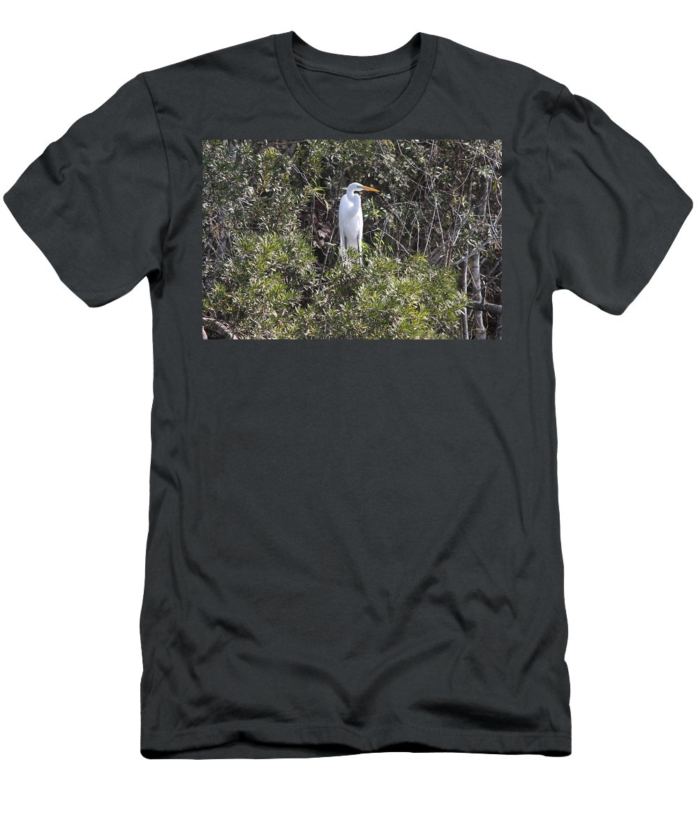 Egret Men's T-Shirt (Athletic Fit) featuring the photograph White Egret In The Swamp by Christiane Schulze Art And Photography