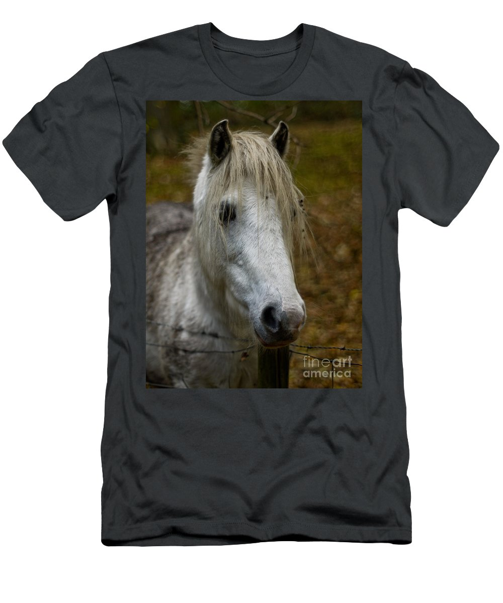 Horse Men's T-Shirt (Athletic Fit) featuring the photograph White Pony by Brothers Beerens